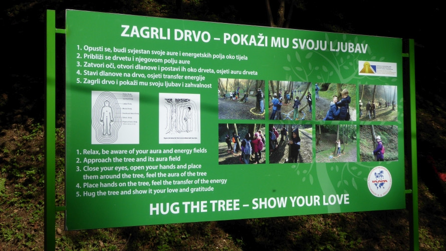 Hug the tree Info